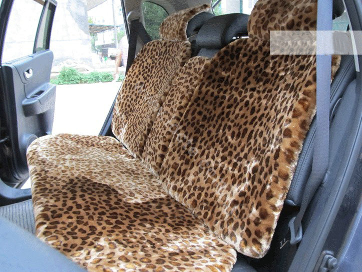 Brown Car Seat Images